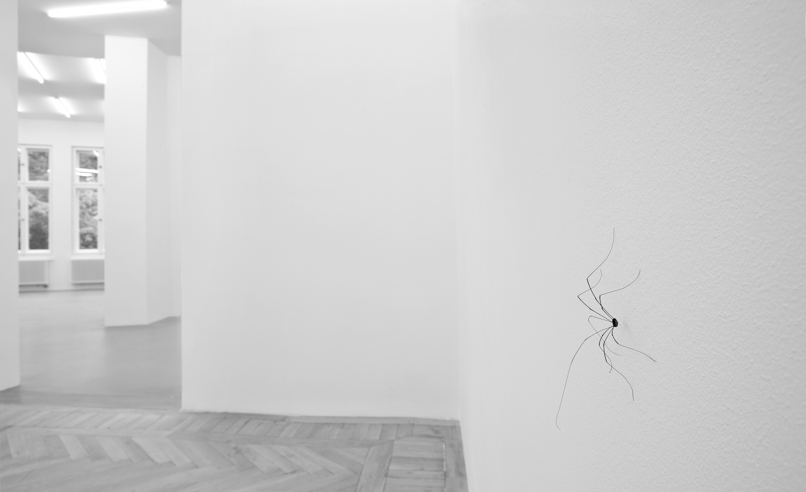 Grey Room Abstract Habitats Installations Of Coexistence And
